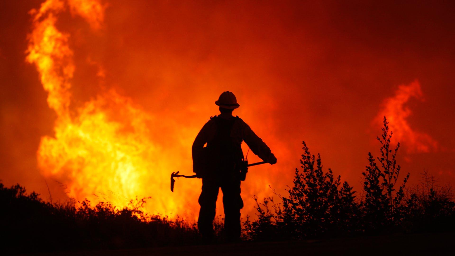 Incendios forestales y vacío institucional